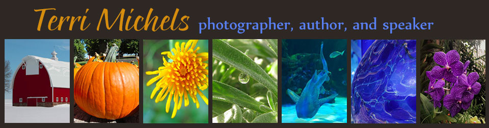Terri Michels photographer author speaker
